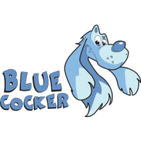 Blue Cocker